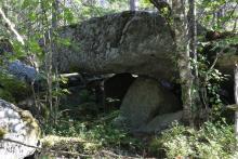 A to największy grzyb jaki znaleźliśmy!