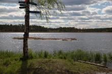 Całkiem niedaleko od Umeå położone jest to śliczne i malownicze jezioro.
