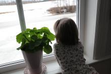 A za oknem wiosna już tuż tuż!