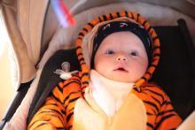 Mały tygrysek.