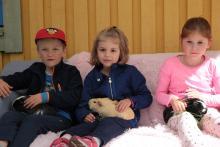 Trzymanie i karmienie świnki morskiej było pierwszą atrakcją dla niektórych dzieci.