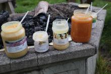 Kosmatka podzieliła się z dziećmi swoim miodem o różnych smakach.