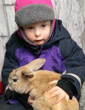 Pierwszy raz trzymam królika.